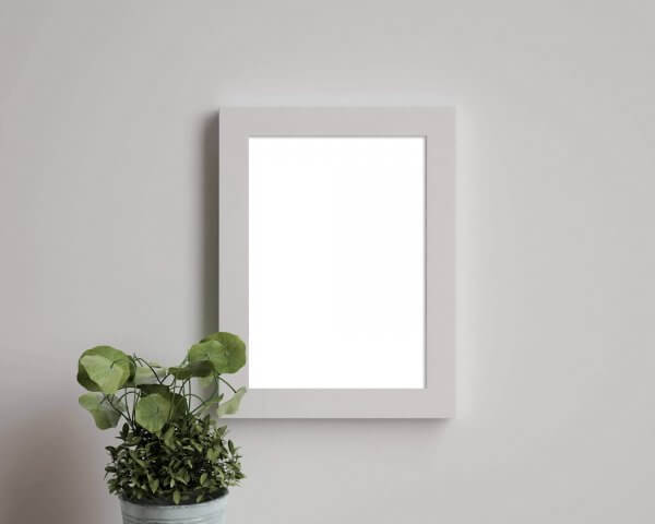 WHCC White Slim Frame on a wall with a small plant.
